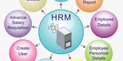 Phân hệ Human Resources của ERP