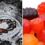 Top thực phẩm bẩn hot nhất tuần qua