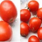 Mẹo chọn mua cà chua ta ngon, chín tự nhiên