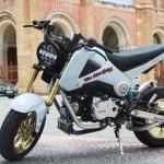 Biker Bạc Liêu chi nửa tỷ độ Honda MSX 125