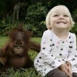 Giáo dục cho trẻ mầm non – Bé khỉ và bé người