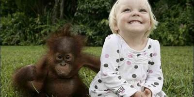 Giáo dục cho trẻ mầm non - Bé khỉ và bé người