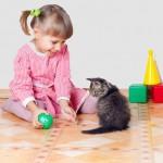 Giáo dục cho trẻ mầm non – Bé mèo và bé người