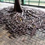 Những công trình nhân tạo bị thiên nhiên xâm lấn