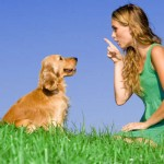 Part 1 – Chapter 3 – Communicating with Your Dog