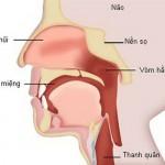Cần sớm phát hiện các loại ung thư đầu cổ