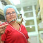 Nhà sản xuất Cuba nói gì về sản phẩm Vidatox gây tranh cãi ở Việt Nam?