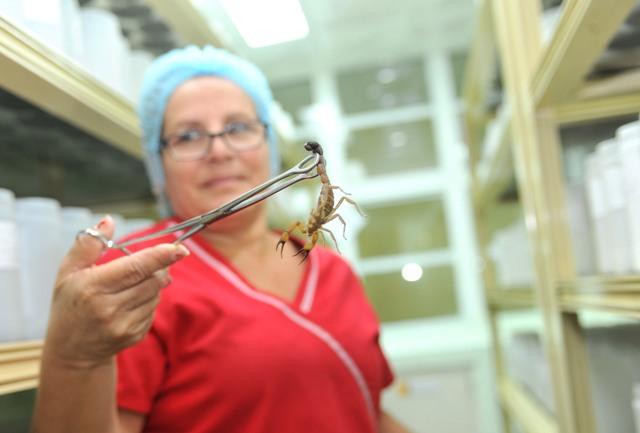 Sản phẩm thuốc Vidatox hỗ trợ chữa ung thư